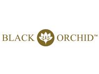 black-orchid-logo